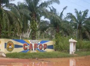 photo_CAFOP 2